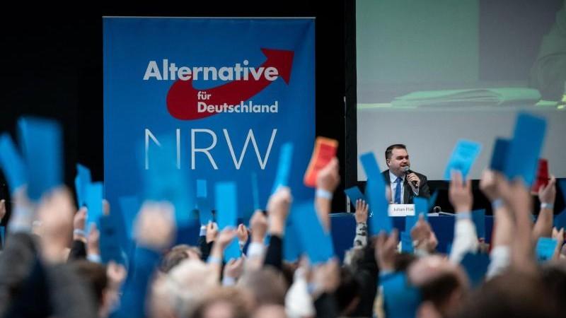 Kommunalwahlen: AfD will in Fraktionsstärke in Parlamente