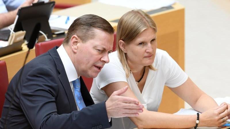 Zwei von drei Anfragen im Landtag kommen von Grünen und AfD