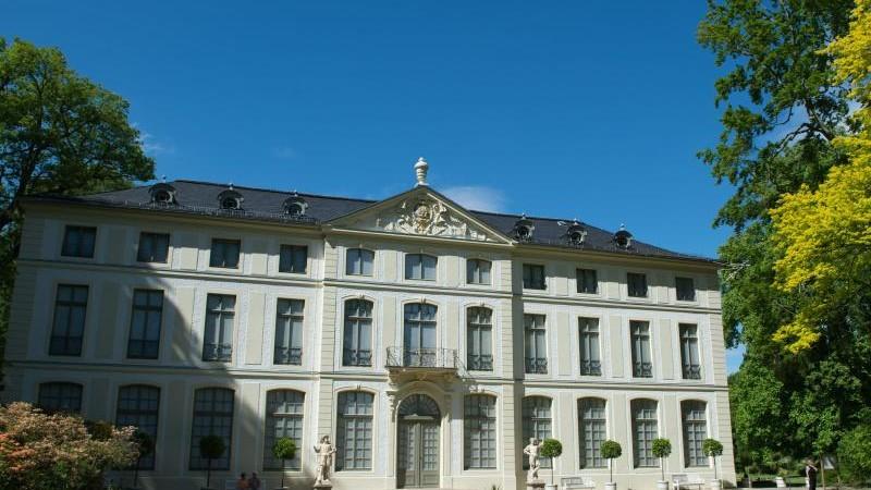Karikaturen im Fenster des Greizer Sommerpalais
