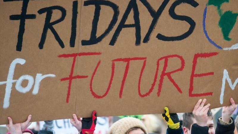Fridays for Future demonstriert im Netz weiter
