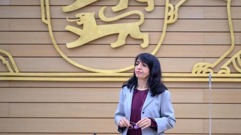 Landtag setzt AfD Ultimatum wegen unzulässiger Wahlwerbung