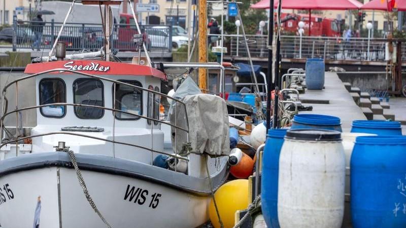 Küstenfischerei in Not: Überbrückungszahlungen gefordert