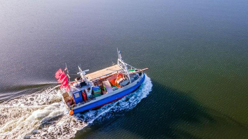 Ostsee: Fang von Hering und Dorsch wird stark eingeschränkt