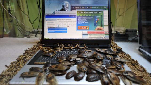 Kriegsführung im Cyberspace: Würmer und andere Schädlinge greifen Computer heute eher digital an - das hat für die vernetzte Gesellschaft weitreichende Folgen.