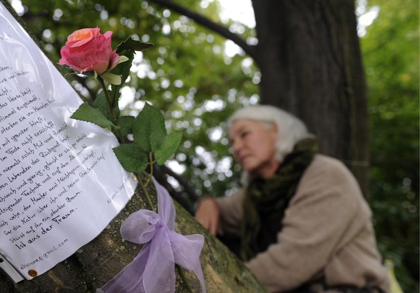 Polizei holt neun 'Stuttgart 21'-Gegner aus den Baeumen