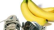 Sportlernahrung, Ernährung, Sport, Nahrung