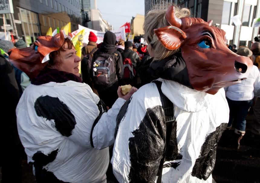 Demo für Öko-Landwirtschaft