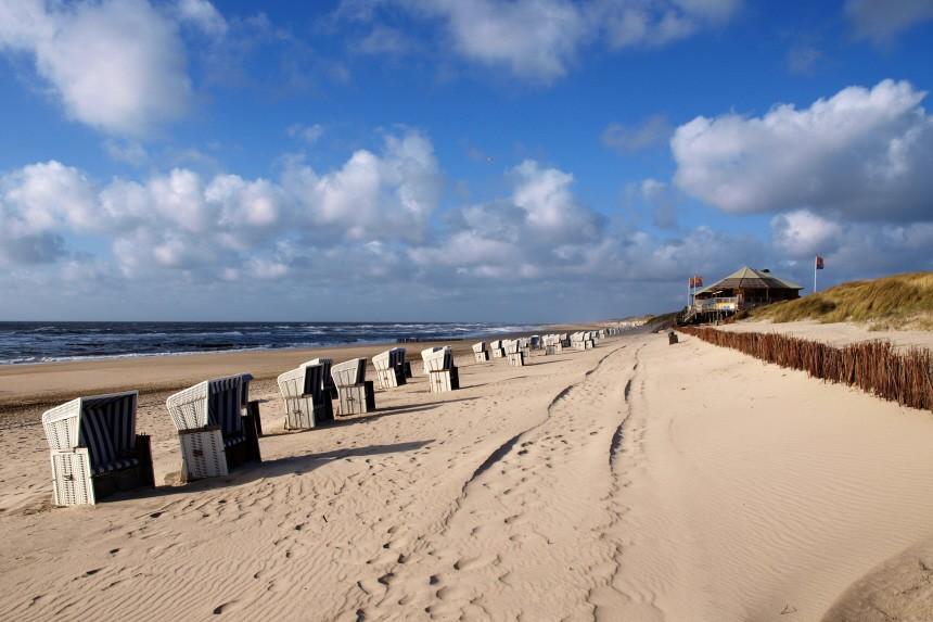 Treibgut am Strand - Im Winter auf Sylt