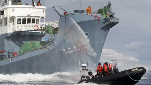 File photo of Japanese whaling fleet vessel Yushin Maru No. 3 spraying water cannons at Sea Shepherd activists in a dinghy boat during their clashes in the Southern Ocean