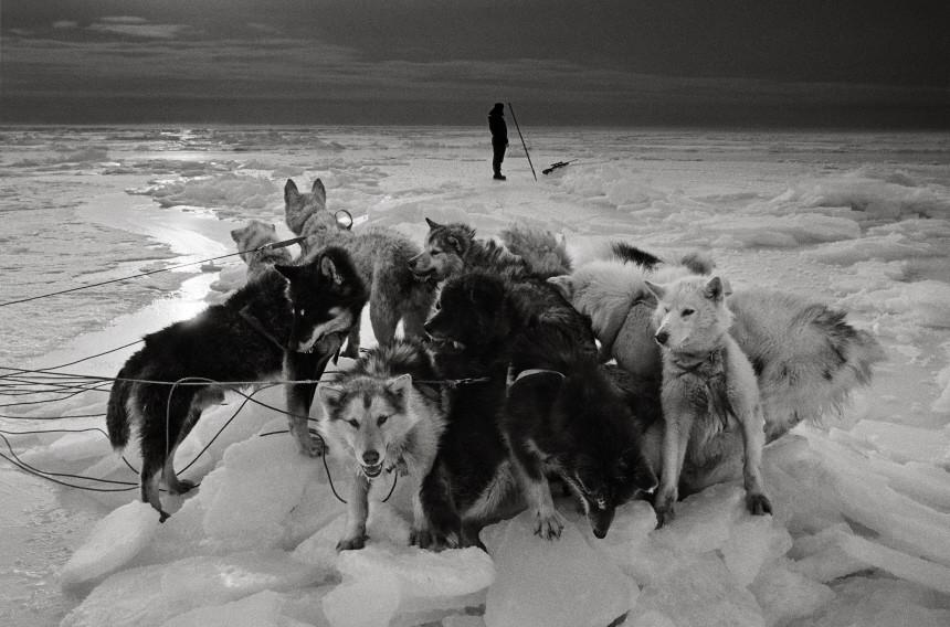 Bildband die letzten Jäger der Arktis