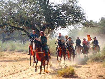 Auf Marwari-Pferden durch den Westen Indiens, dpa