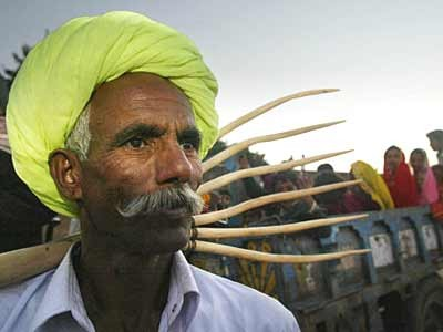 Menschen von Rajasthan, AP