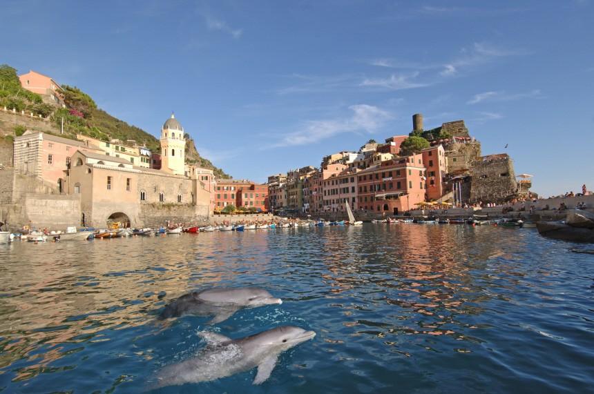 Haie sehen und Weinberge retten: Aktivurlaub in Cinque Terre