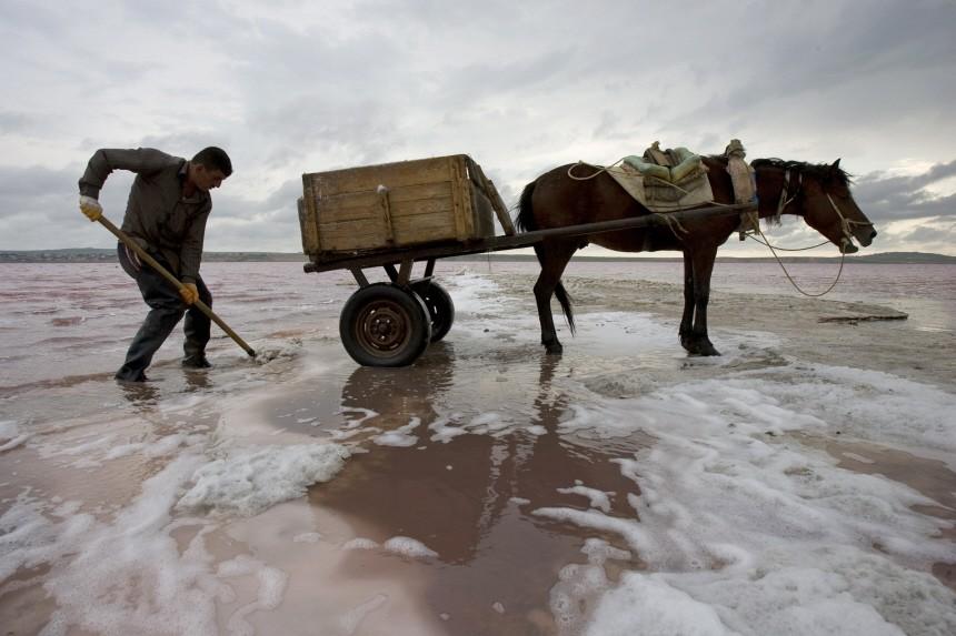 A man harvests salt in a lake northwest of Baku