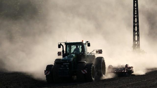 Trockenheit in Landwirtschaft und Natur