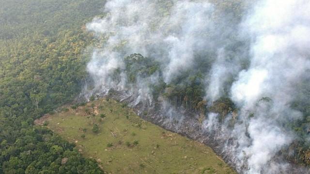 Brasiliens Parlament schwächt Schutz des Regendwaldes