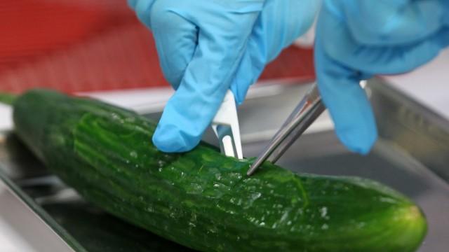 Experten finden mutiertes EHEC-Bakterium auf Gurkenrest