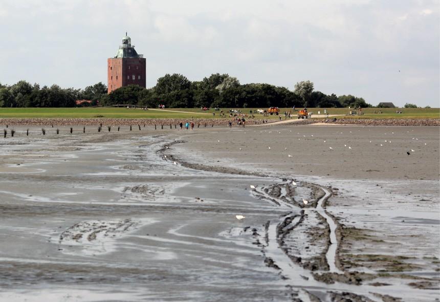 Vorschau: Bekanntgabe 'Nationalpark Hamburgisches Wattenmeer' als Weltnaturerbe