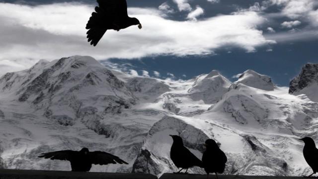 Blick auf die Dufourspitze, höchster Berg der Schweiz