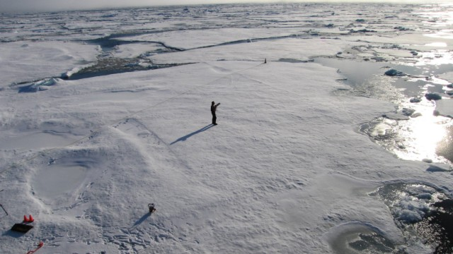 A member of a team of Cambridge scientists trying to find out why Arctic sea ice is melting so fast, walks on some drift ice 500 miles from the North Pole