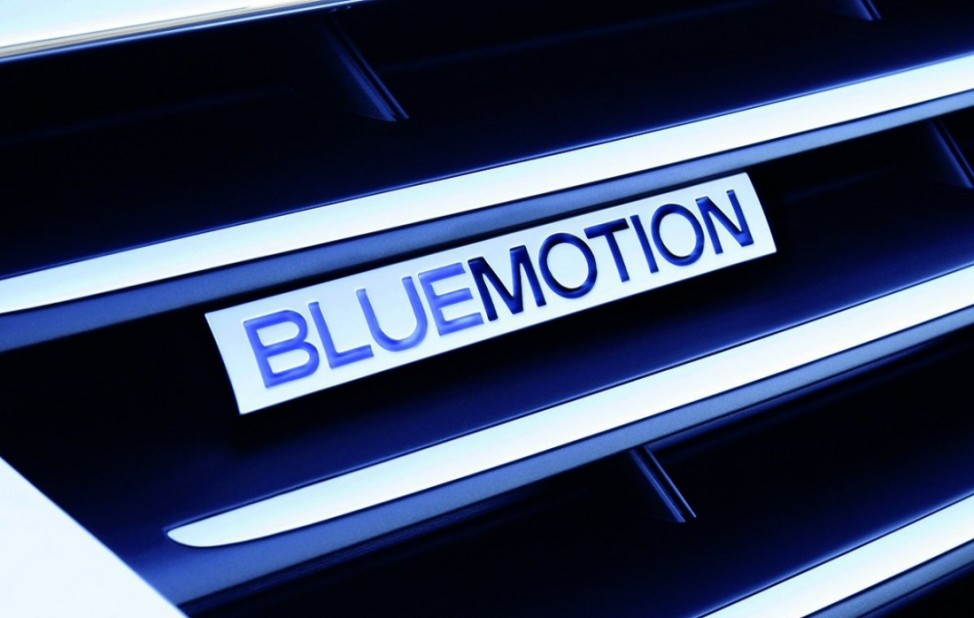 Flottenmanagement Leichtlaufreifen BlueMotion