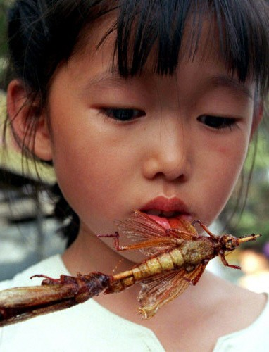 Chinesisches Mädchen mit Insekt