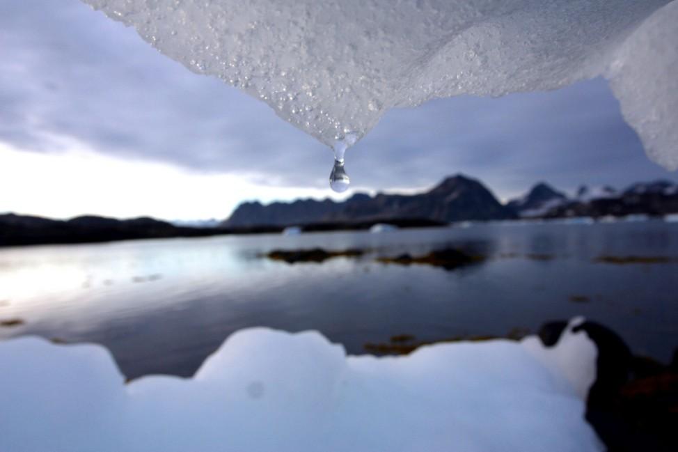 Schmelzender Eisberg in Grönland, 2005