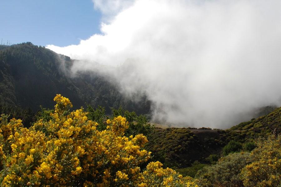 Gran Canaria Spanien Spain island insel