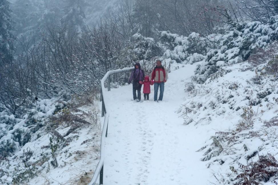Erster Schnee im Bayerischen Wald