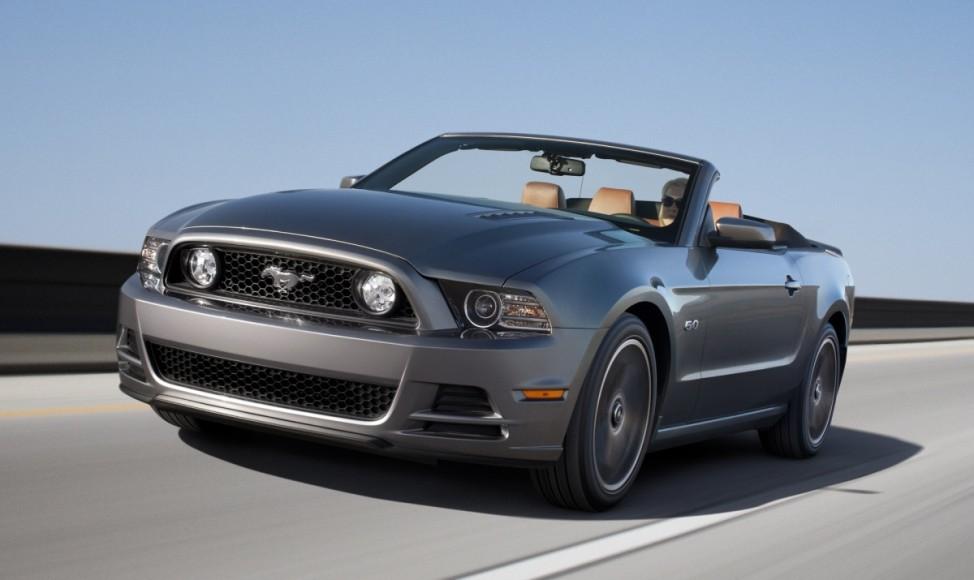 Pferdepflege Ford Mustang GT