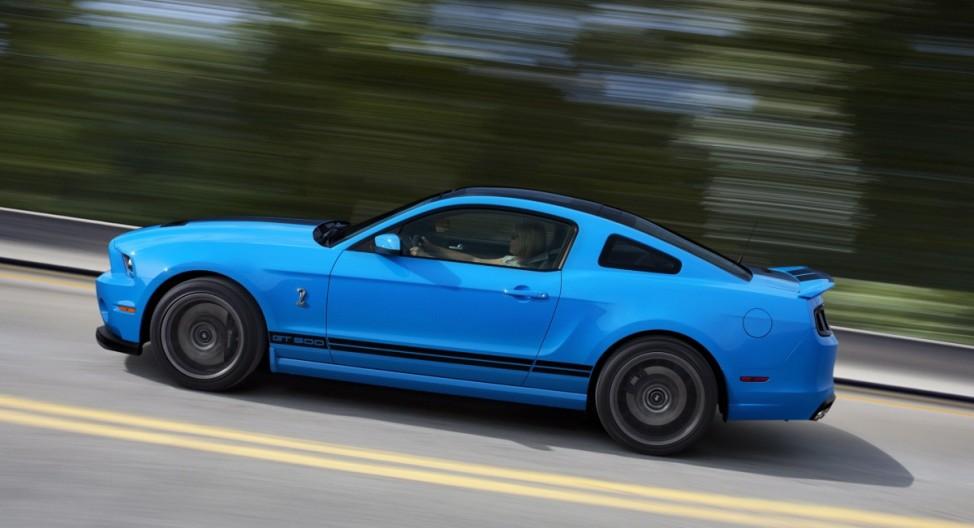 Pferdepflege Shelby GT500