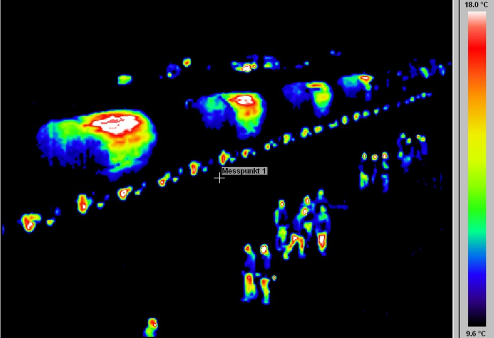 Thermal image shows German police guarding train transporting Castor containers in Neunkirchen