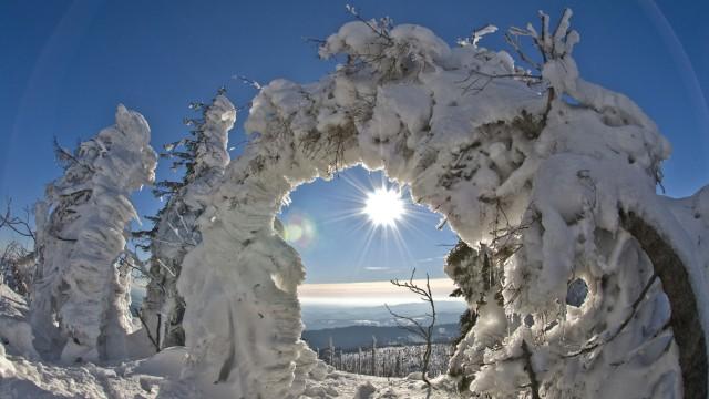 Langlaufen im Bayerischen Wald: Soweit die Skier gleiten