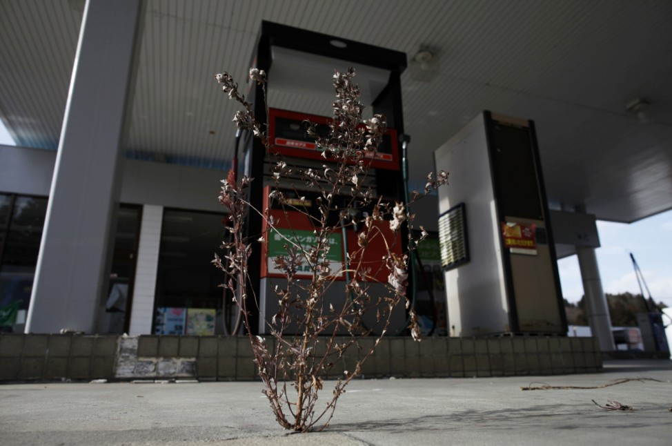 A weed is seen growing out of the cracks at a petrol station on Route 6 in Tomioka town in the Fukushima exclusion zone