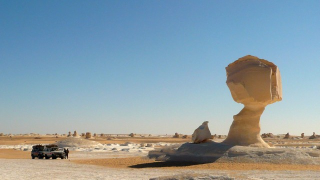 Kamel zum Revolutionspreis - Ägypten fehlen die Touristen