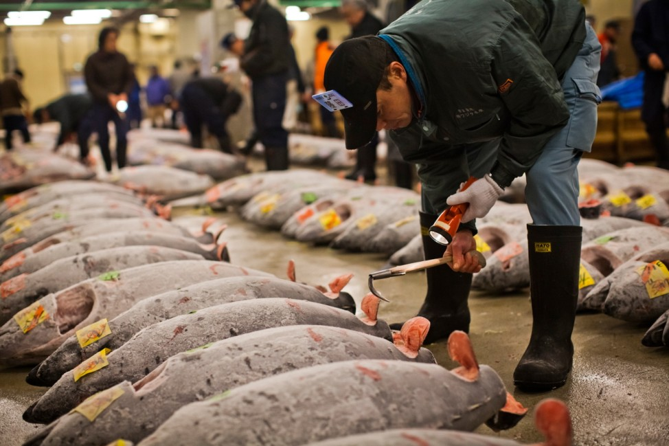 Daily Life At Japan's Tsukiji Market