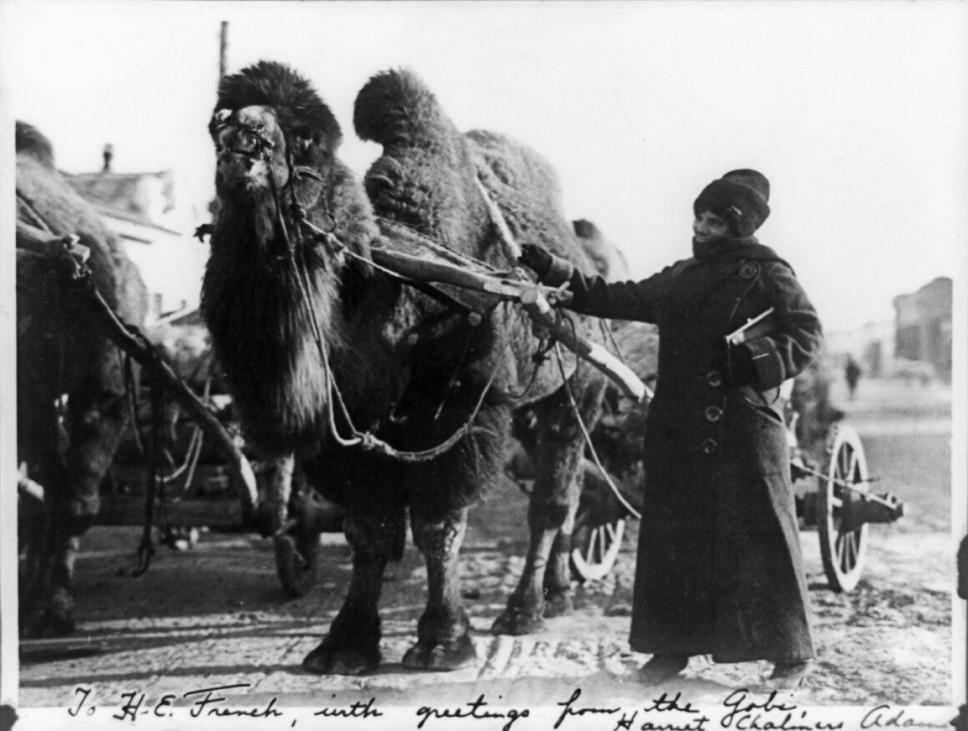 Fernreisen Abenteuer Globetrotterinnen Harriet Chalmers Adams (1875-1937), American explorer.