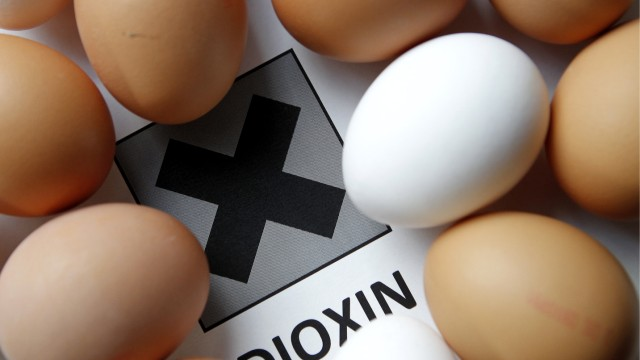 Zwei Legehennenbetriebe in Niedersachen wegen Dioxin-Fund gesperrt