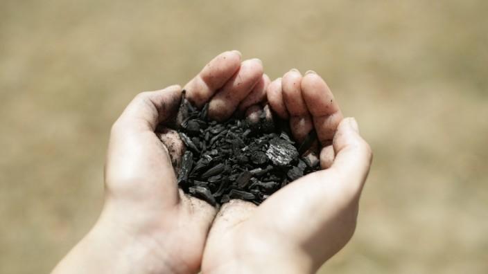 """""""Biokohle"""": Biokohle aus organischem Material könnte bei der Stromversorgung helfen."""