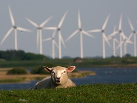 Geldanlagen: Investment Wind; dpa