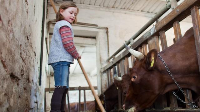 Kinder auf Bauernhöfen haben weniger Allergien