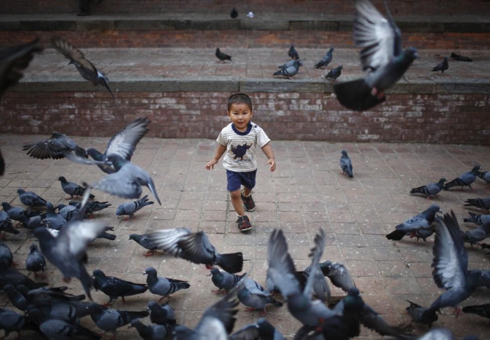 A boy runs after pigeons in Kathmandu