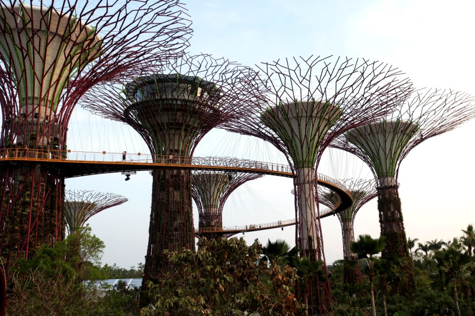 Singapore Supertrees Vertical Gardens Opens To Public