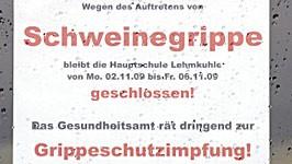 Schweinegrippe, ddp