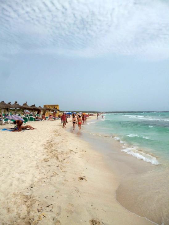 Streit um Badeparadies Es Trenc auf Mallorca