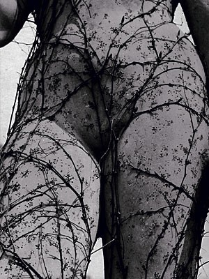 surrealismus fotografie