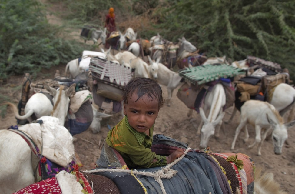 A child rides on a donkey as they migrate due to lack of water at Sami town in the western Indian state of Gujarat