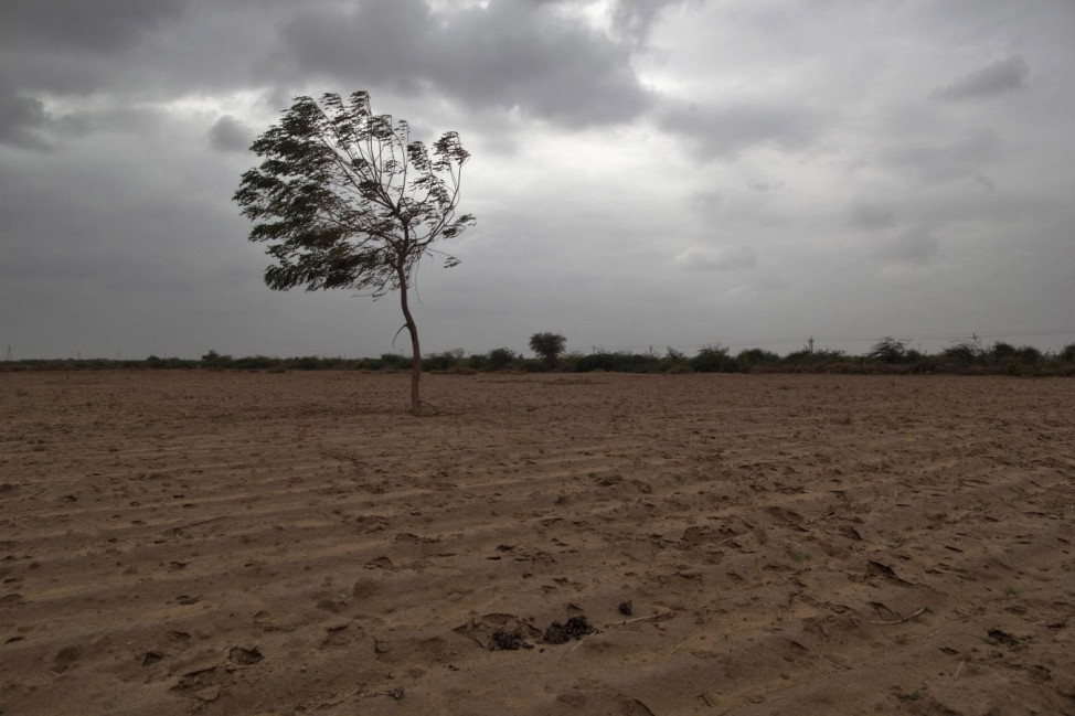 Dried agricultural farmland is pictured on outskirts of Sami town in the western Indian state of Gujarat