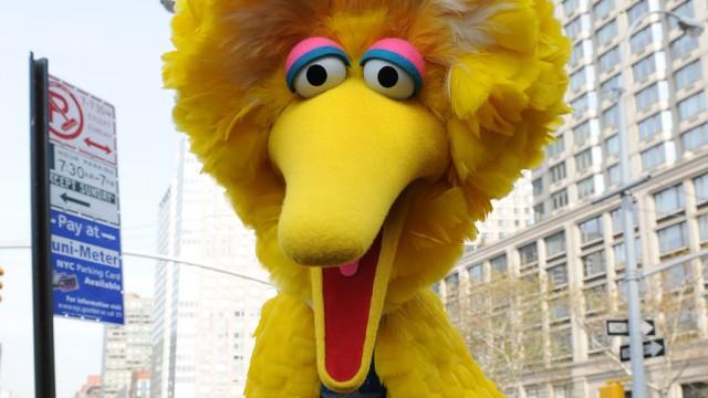 """Romney und @FiredBigBird: Muss Big Bird gehen, wenn Mitt Romney kommt: Anhänger des großen """"Sesamstraßen""""-Vogels nehmen dem US-Präsidentschaftsbewerber Kürzungspläne bei der US-Kindersendung übel."""