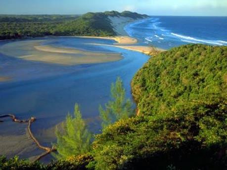 Afrika Südafrika Safari, Tourism KwaZulu-Natal/dpa